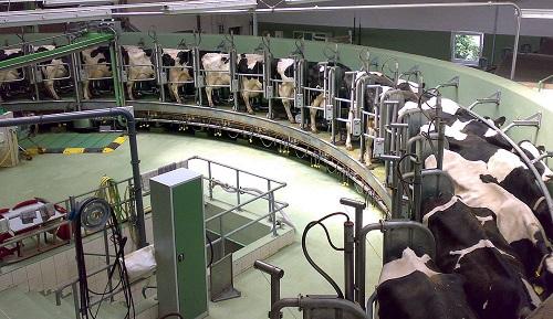 milk-farm-small