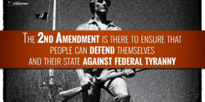 What Was the Purpose of the Second Amendment?